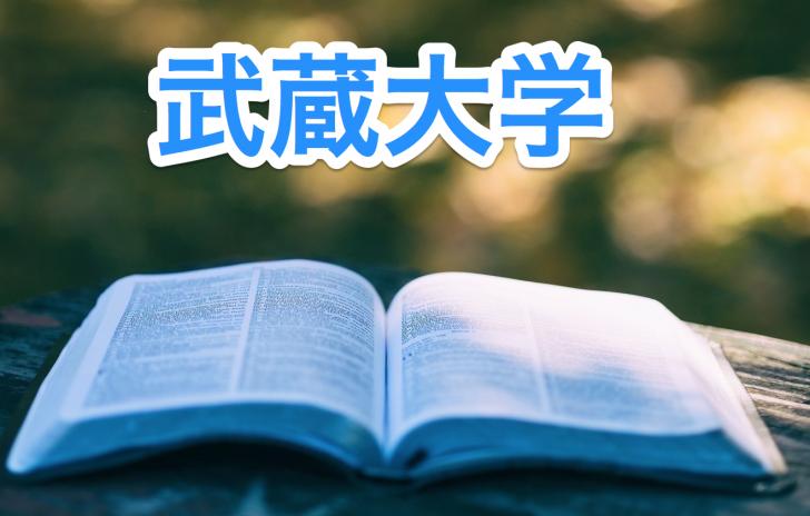 大学 偏差 値 武蔵